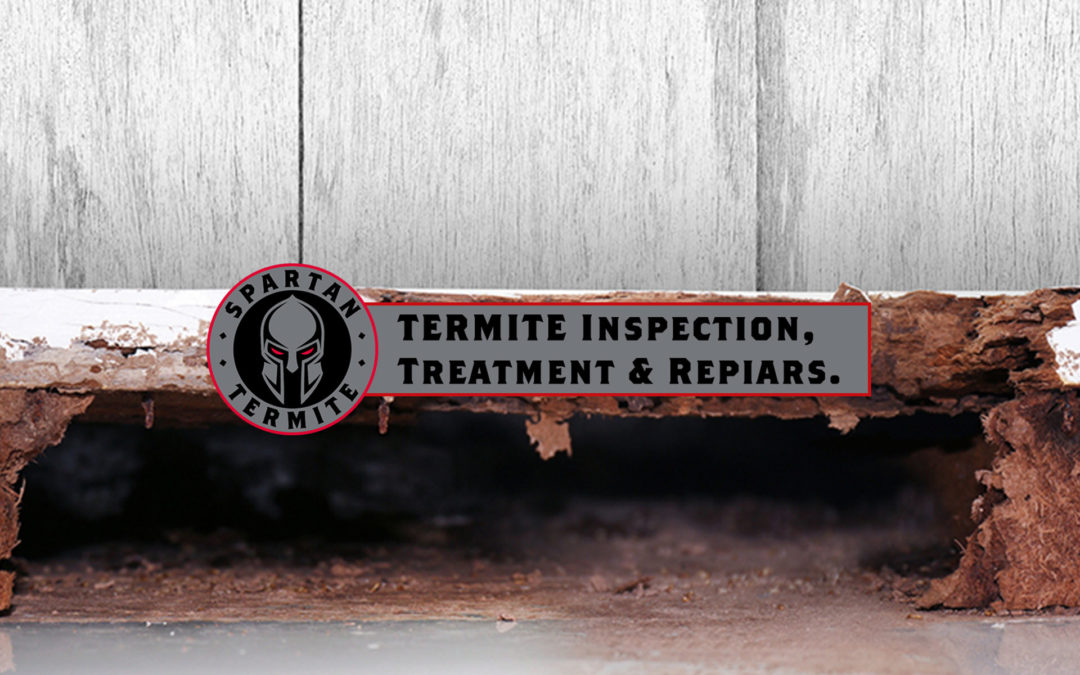 Spartan Termite Inspection